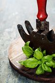 vintage herb cutting mezzaluna knife with fresh basil