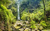 Erskine Falls Waterfall