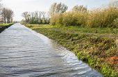 Dutch Canal In Autumn