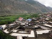 picture of mustang  - The village Marpha next to its apple farms with its typical houses  - JPG