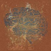 Grunge Background With Human Brain