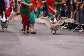 image of all seeing eye  - Every year in Lacchiarella is the festival of the goose where thousands of people from all over Italy come to see the race of geese - JPG