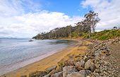 Quiet Cove On A Rustic Coastline