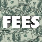 Fees word in 3d letters to illustrate penalties, added cost, price or burden on a purchase or service