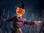 Halloween scarecrow with jack-o-lantern pumpkin head on dark blue background