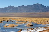 Frozen Lake In Atacama Altiplano, Chile