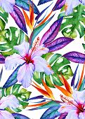 image of bird paradise  - watercolor seamless tropical pattern with hibiscus strelizia monstera palm bird of paradise - JPG