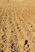 stock photo of plowed field  - Background image of a plowed spring field - JPG