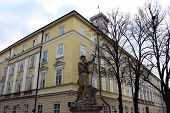 pic of adonis  - Lviv Town Hall and Adonis sculpture in the front - JPG