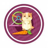 pic of gerbil  - Golden hamster eating carrot near round cells - JPG