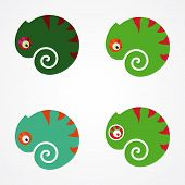 picture of chameleon  - illustration with stylized chameleon on a white background - JPG
