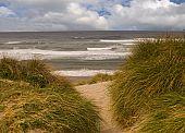 Coastal sand dunes and beach