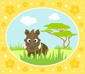 stock photo of boar  - Safari background card with wild funny boar - JPG