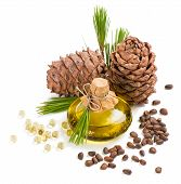 picture of pine nut  - Cedar pine oil in a bottle and capsule cones and nuts isolated on white background - JPG