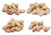 Peanuts macro shots, isolated on white