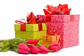 Red tulips and gift boxes on a white background