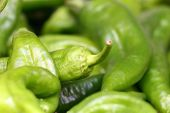 Green Chillie Peppers Macro.