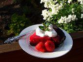 Tempting Fresh Berry Pie