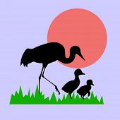 vector silhouette of the crane with nestling on background sun
