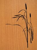 reed on wood background. vector