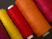 warm colored bobbins
