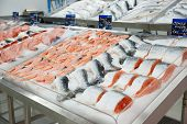 Salmon on cooled market display, tm's removed from price tags
