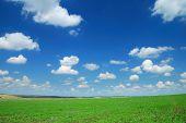 Foto de paisaje de verano. Campo y cielo nublado.