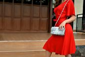 Fashionable Woman In Red Dress Holding Leather Snakeskin Python Bag. Close Up Of The Purse In Hands  poster