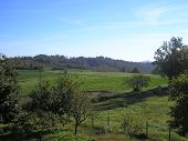 pic of bute  - Landscape panorama view of Marcorengo hills in Brusasco near Turin - JPG