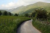 Lake District Lane