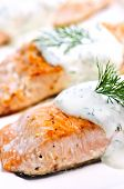 Cooked Salmon poster