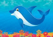 stock photo of cetacea  - High resolution drawing for your design and wallpaper - JPG