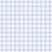Dainty Baby Blue Plaid