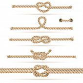 Set of ropes and knots, vector illustration (with strokes attached in eps for additional use)