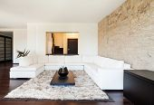 Apartamento de lujo interior, hermosa sala de estar