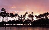pink Hawaiian sunset