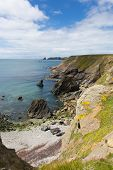Welsh coastal scene towards Skomer Island Pembrokeshire, area known for Puffins and wildlife poster