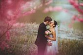 stock photo of bridal veil  - happy bridal couple kissing in park - JPG