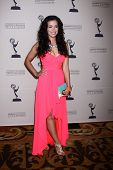 LOS ANGELES - JUN 13:  Theresa Castillo arrives at the Daytime Emmy Nominees Reception presented by