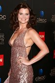 LOS ANGELES - JUN 16:  Heather Tom arrives at the 40th Daytime Emmy Awards at the Skirball Cultural Center on June 16, 2013 in Los Angeles, CA
