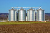 picture of silos  - silver silo in rural landscape under blue sky - JPG