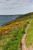 Welsh coastal view towards Newgale and Rickets Head St Brides Bay Pembrokeshire