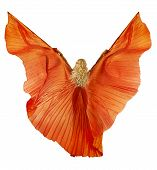 Woman In Belly Dance Fabric Dress As Wings. Back Side View. Isolated White