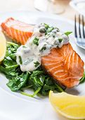 stock photo of tartar  - Grilled Salmon with Spinach - JPG