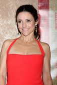 vLOS ANGELES - JAN 12:  Julia Louis-Dreyfus at the HBO 2014 Golden Globe Party  at Beverly Hilton Ho