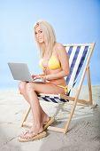 Young Woman In Bikini Using Laptop