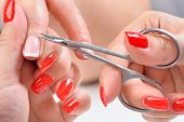 picture of nail-cutter  - beauty salon - JPG
