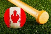 Canada Baseball