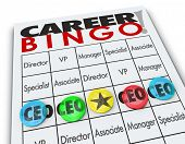 CEO or Chief Executive Officer word on a Career Bingo card or game board