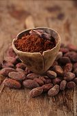 cocoa powder in spoon on roasted cocoa chocolate beans background